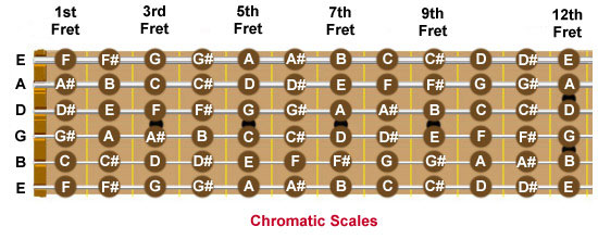 Guitar Notes Fretboard Chart. Guitar fretboard showing every